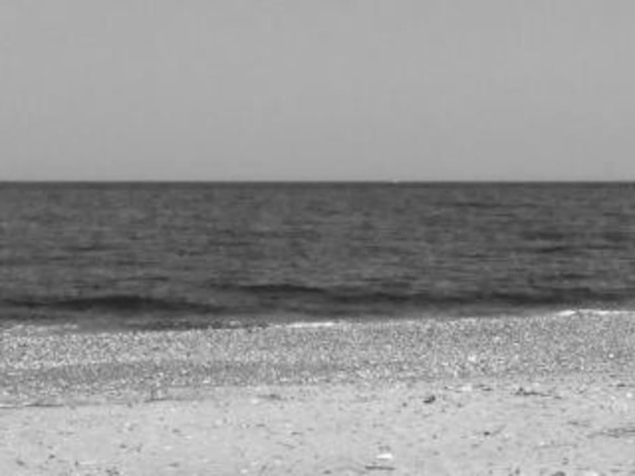 Mare con spiaggia di sassolini (foto in bianco e nero)