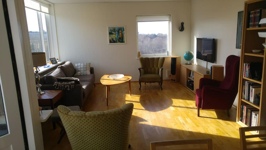 Bright and cozy family appartment - Reykjavik - Appartamento