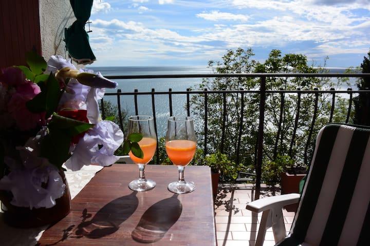 Villa S.Croce, sul Golfo di Trieste - Trieste - Apartamento