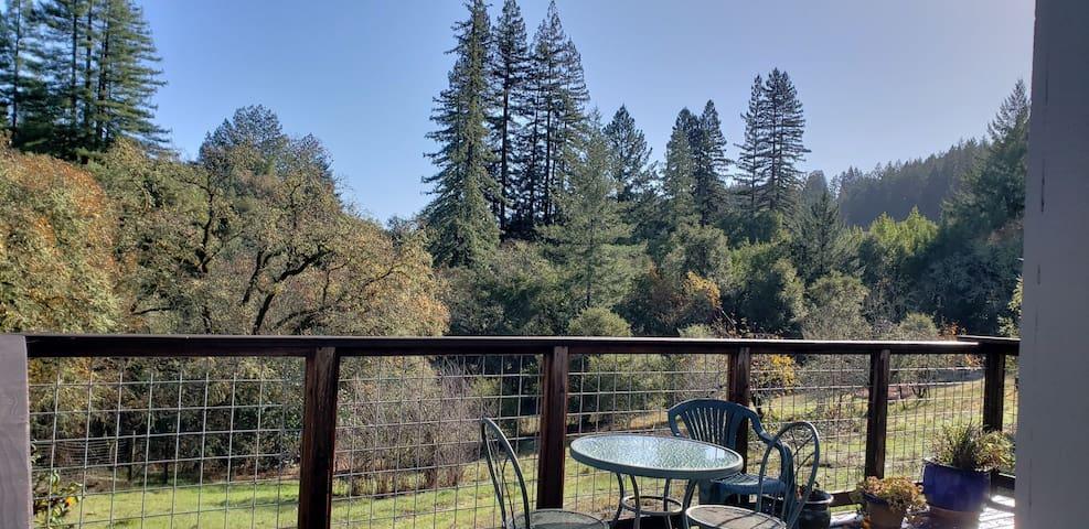 Healdsburg Hillside Retreat