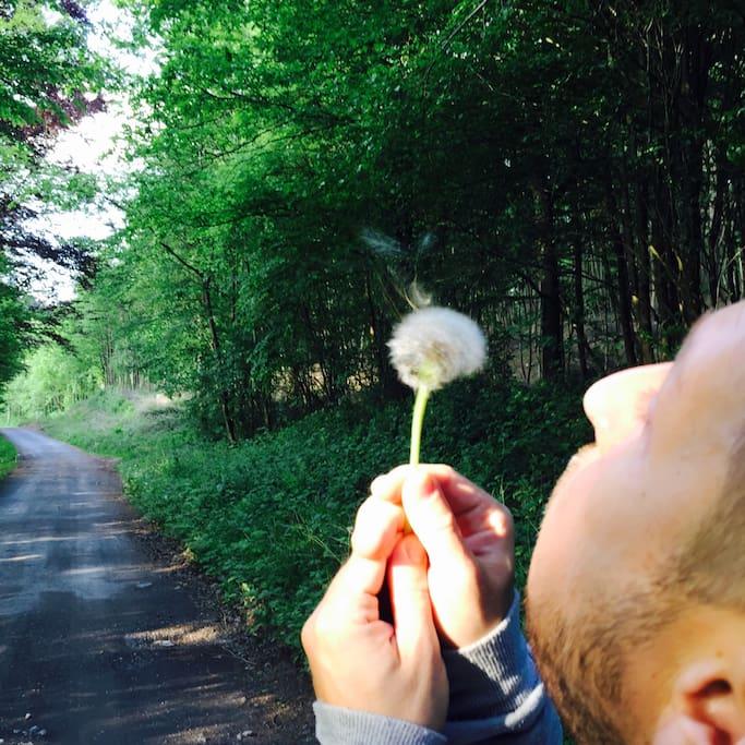 Destressing and enjoying nature