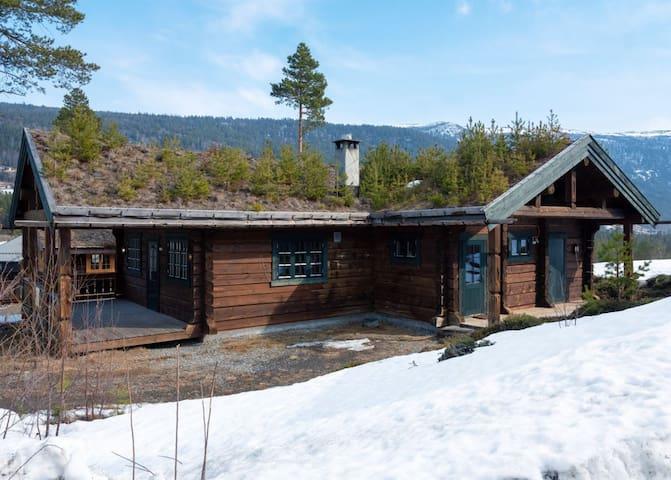 Cozy Cabin in Uvdal, Ski in-/out