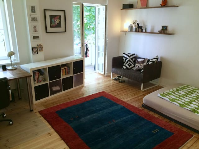 Big room with balcony in central shared apartment