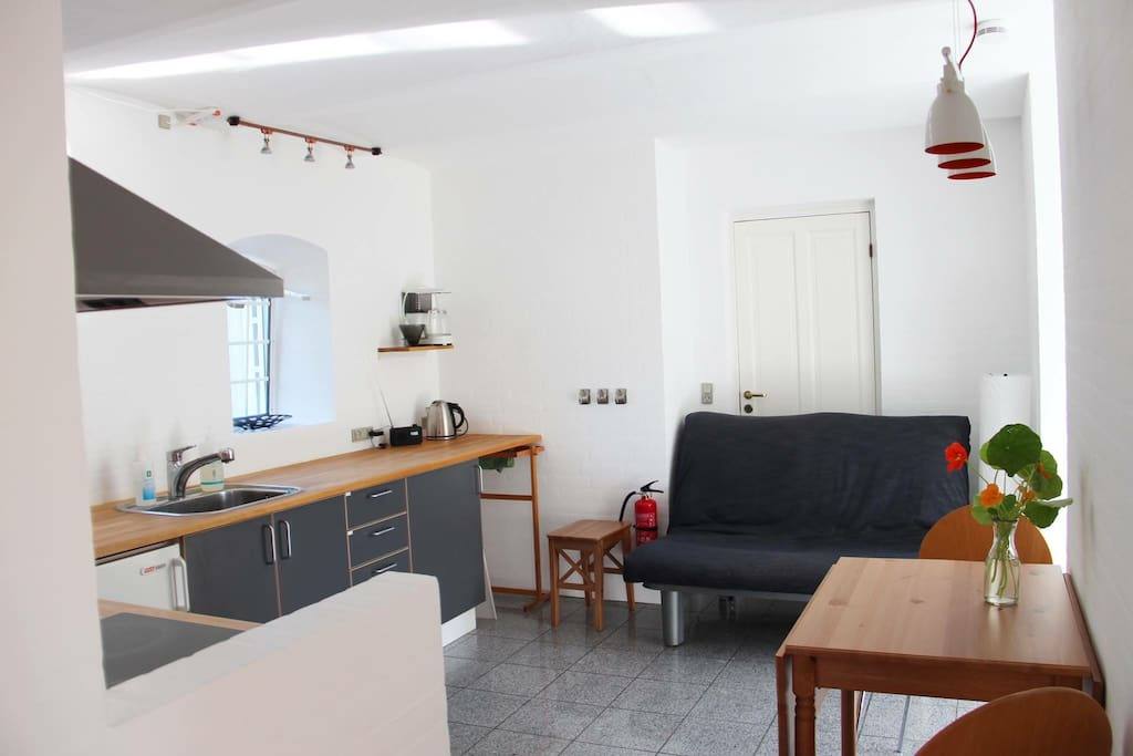 living/dining/kitchen room with sleeping sofa