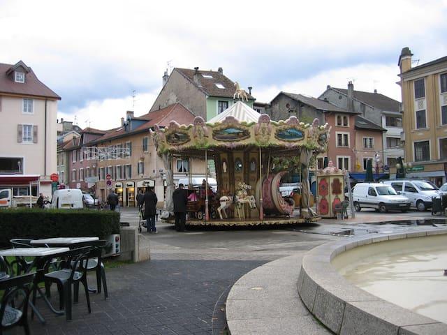T3 de charme, hyper centre - Thonon-les-Bains - Apartament