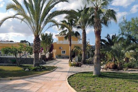 SPACIEUSE VILLA AVEC PISCINE  8 PERSONNES 5 CH - Alicante - Dom