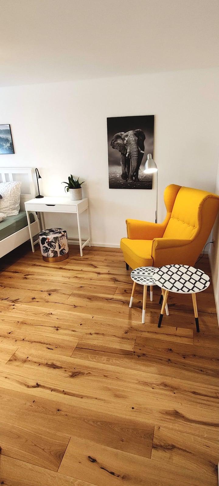 Modern-gemütliche Wohnung, ganz neu, in Neuenheim
