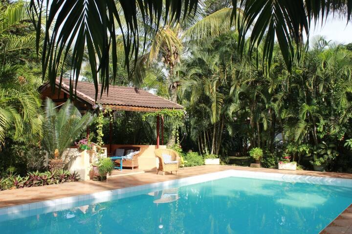 Pabari Paradise
