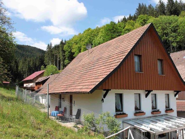 Hansenhof, (Bad Rippoldsau-Schapbach), Ferienwohnung 1, 67qm, 2 Schlafzimmer, max. 4 Personen