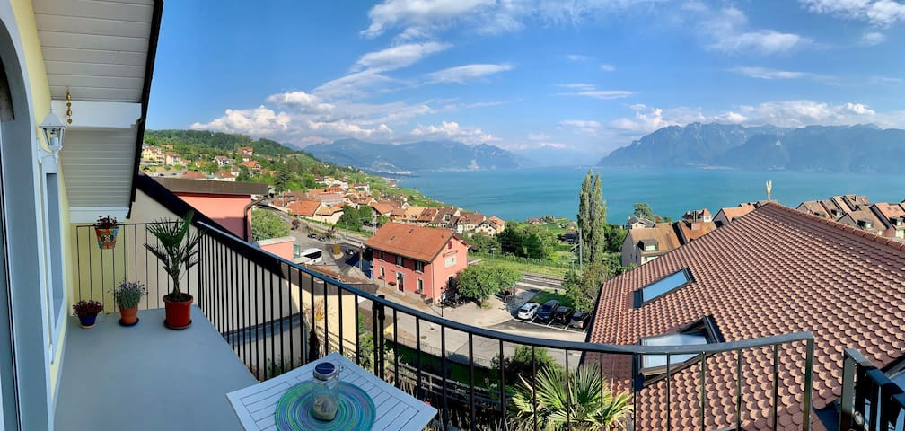 Charming apartment with breath-taking lake view