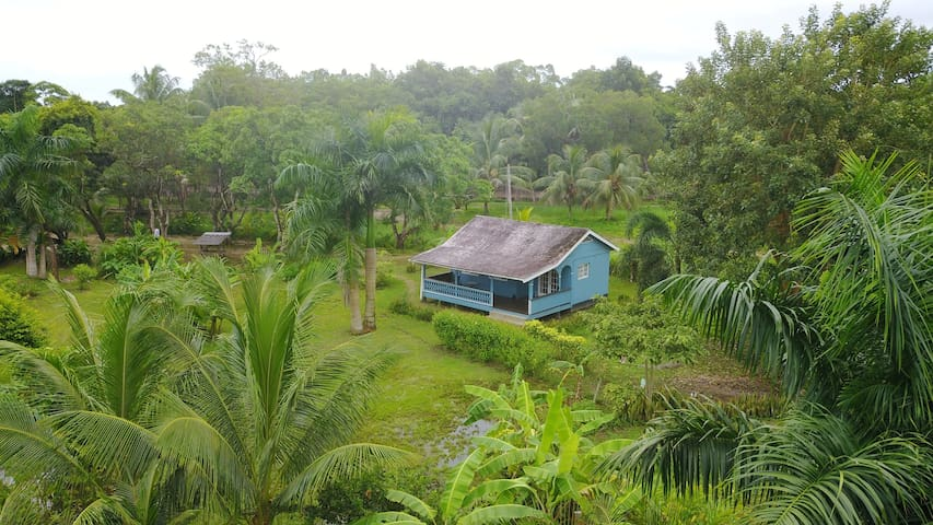 vrijstaande lodges op Plantage in Commewijne
