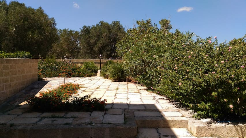Holiday home near Castro Marina, Lecce - Salento - Vignacastrisi - Apartment