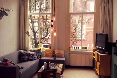 Ruime lichte kamer - prachtig huis - Nijmegen - Bed & Breakfast