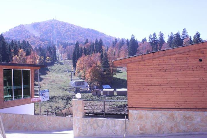 Villa Bakuriani