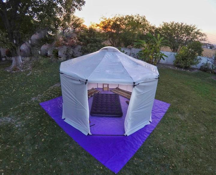 Yurta con domo transparente. Mascotas bienvenidas.