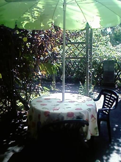 terrasse-jardin devant le studio