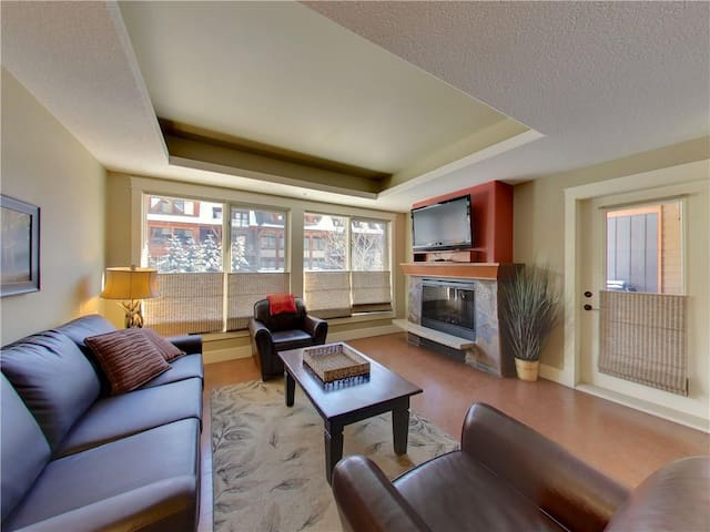 Fireplace, TV, Leather Sofa and Cork Floors