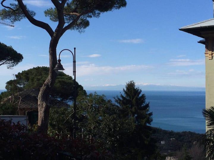 Appartamento H.2.O Portofino_#9 Ulivo