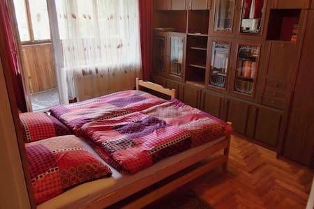 2 bedroom apartment with balcony - Užhorod
