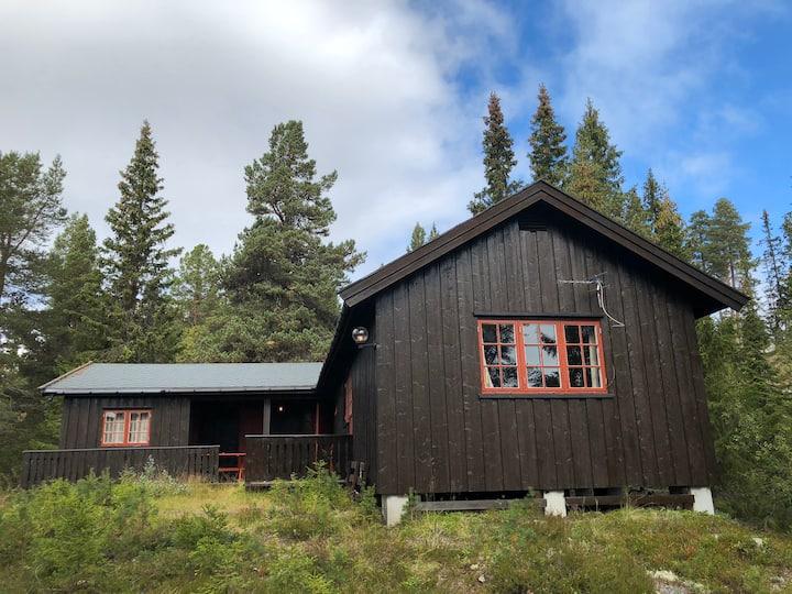 Flott hytte i Telemark med fantastisk utsikt