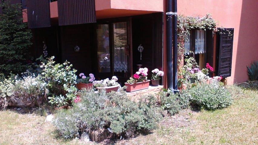 Delizioso appartamentino a Madonna di Campiglio!