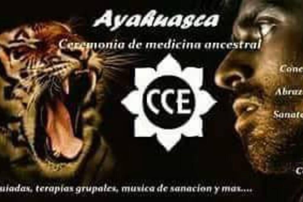 Las ceremonias de Ayahuasca forman parte del proceso ya que está ancestral raíz te ayuda a conectar con te ser interior llevándote a una sanación física emocional logrando tener ese encuentro personal que cambiara tu vida