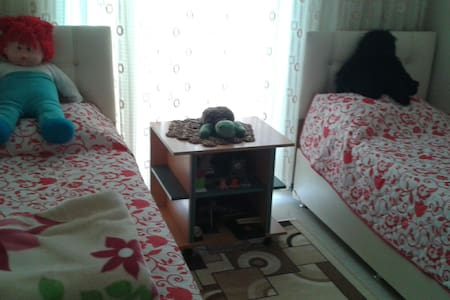 2 beds in 1 room. Free  Lots things - Bed & Breakfast