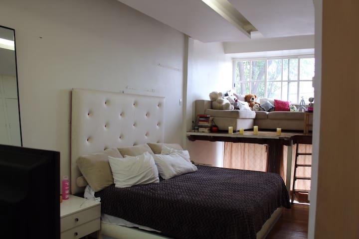 Amplia habitación con salita y baño. - Mexico City - House