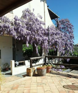 Beautiful house in the center of the Sicily - Agira - 公寓