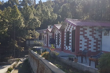Pine forest resort