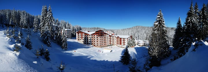 Cozy One Bedroom Apartment with FREE ski shuttle