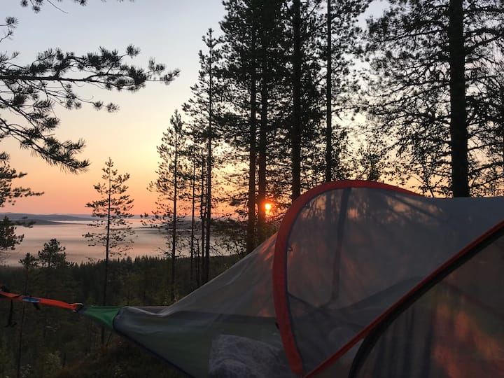 Unique Tree tent experience in privacy in Sweden!