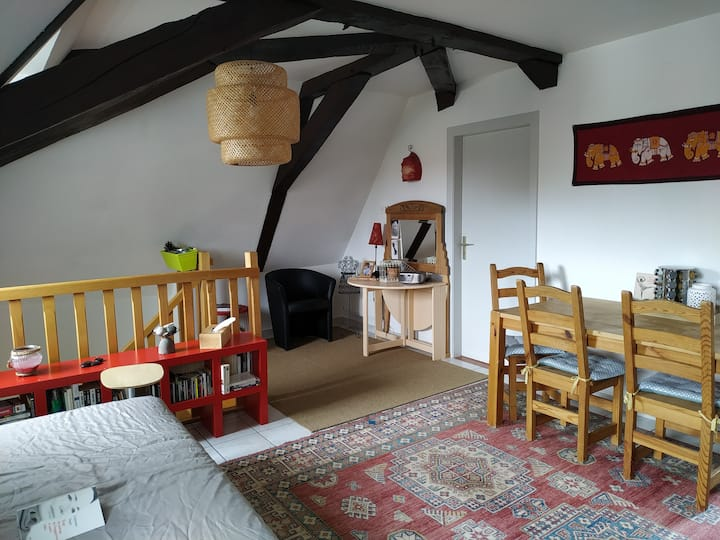 Charmant appartement au cœur du Sundgau.