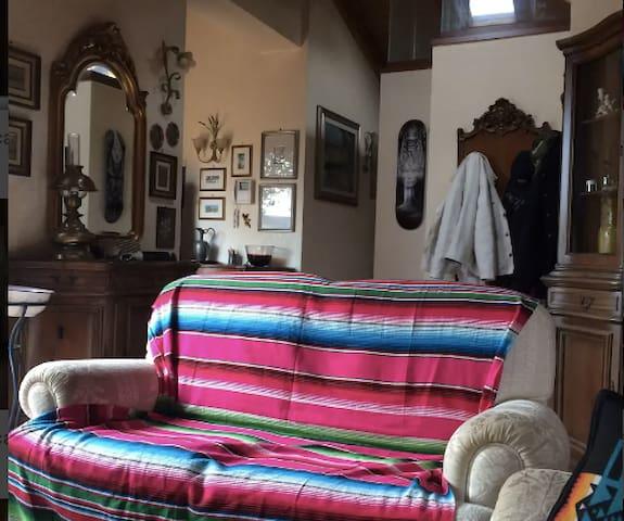 Attico / loft con terrazzo e giardino pensile - Mirandola - Loft