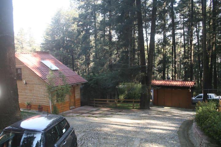 Cabaña dentro de la propiedad