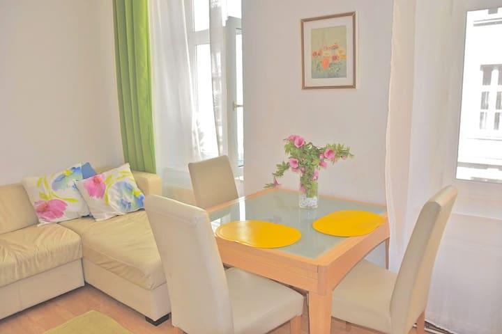 Bright, central apartment in Vienna