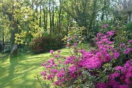 Villa 8 Lanteglos nr Camelford, Tintagel, Bossiney - Cornwall