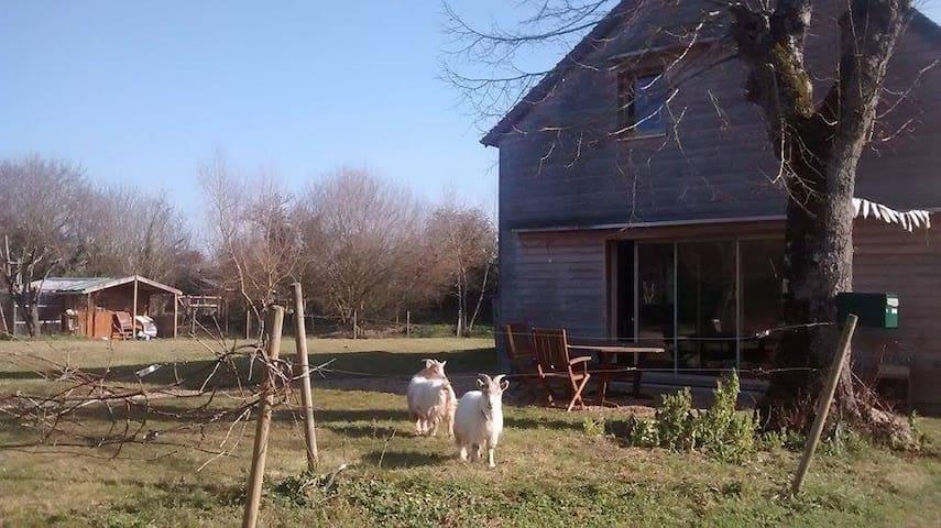 ** Maison de campagne au calme ** - Montigné-lès-Rairies - บ้าน