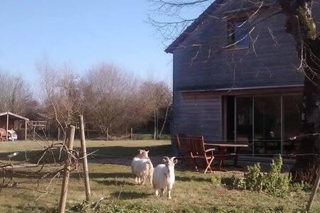** Maison de campagne au calme ** - Montigné-lès-Rairies - Ház
