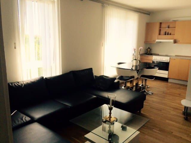 Hyggelig lejlighed tæt på Ølby station - Køge - Apartment