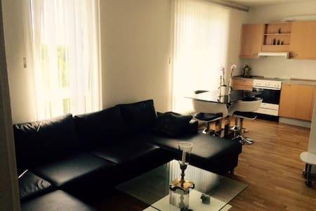 Hyggelig lejlighed tæt på Ølby station - Køge - อพาร์ทเมนท์