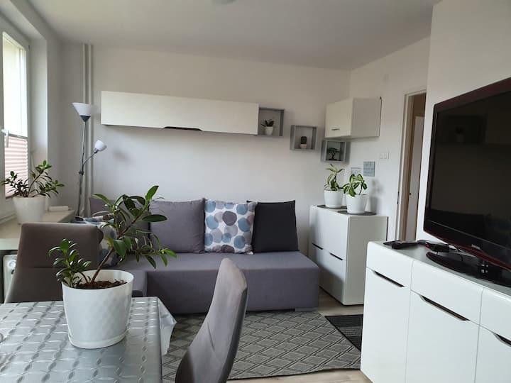 Apartament Stella