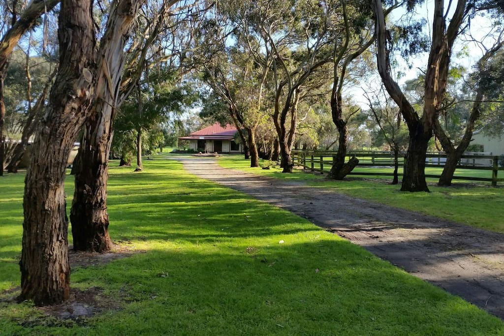 Welcome to 'The Gums'