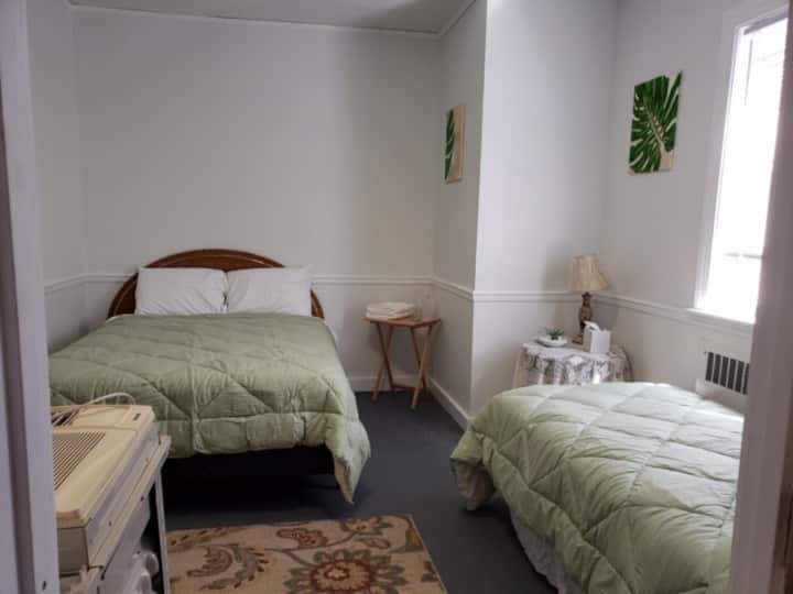 Spacious Room in Renovated Pet Friendly Convent
