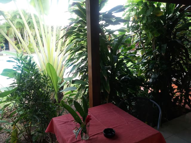 studio Padjanbel/2 swimming pool and tropic garden - Port-Louis - Condominio