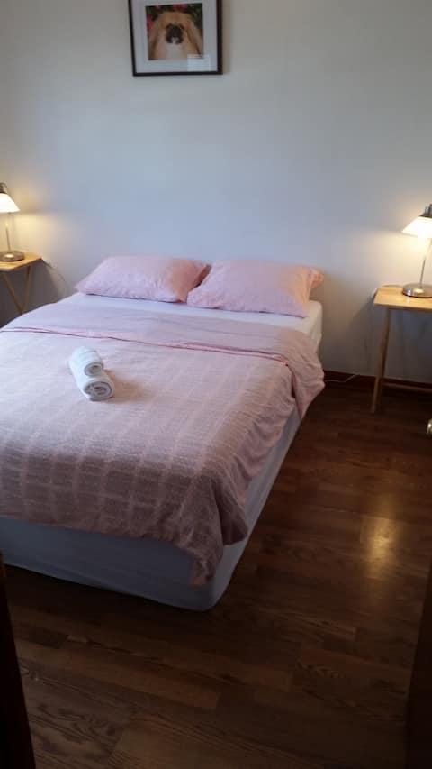 Fantastic Toronto West Spot One Bed room