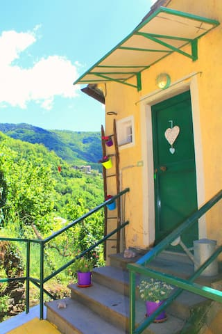 Economic holiday home Liguria - Borzonasca - Apartment