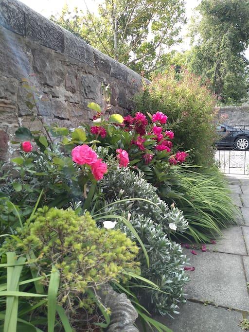 Private gardens