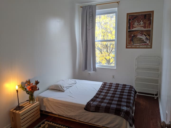 Cozy Private Room in BedStuy