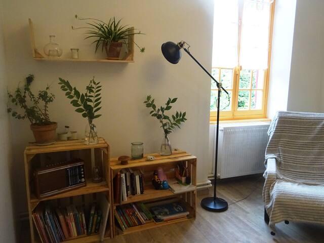 La salon et sa petite bibliothèque